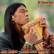 Leo Rojas -Mini Best (Dj Ikonnikov E.x.c Version) 2015