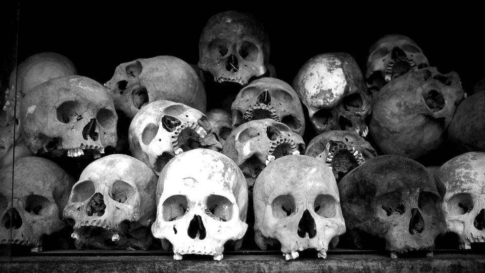 10 важнейших черепов для человечества